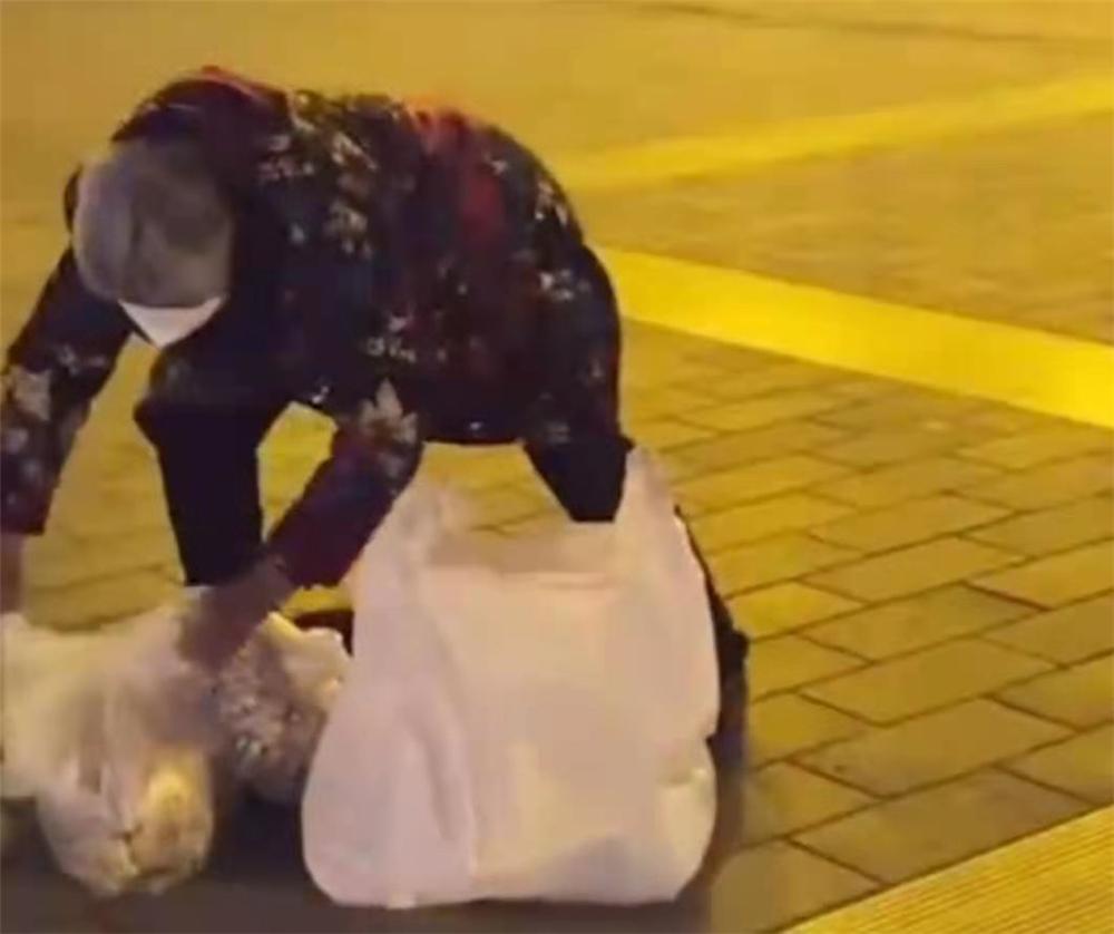 Tình yêu kéo dài 488 km, cụ bà 79 tuổi một mình đi bộ tìm con cháu đón Tết dù mẹ ở đâu.