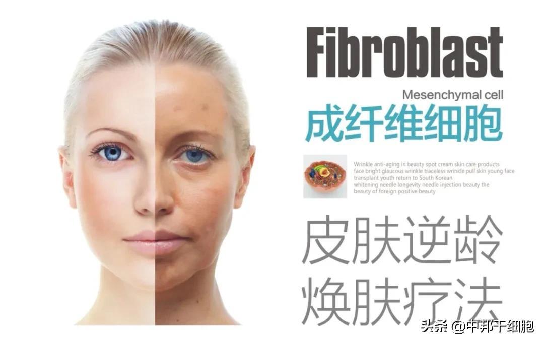 开启生物护肤新时代
