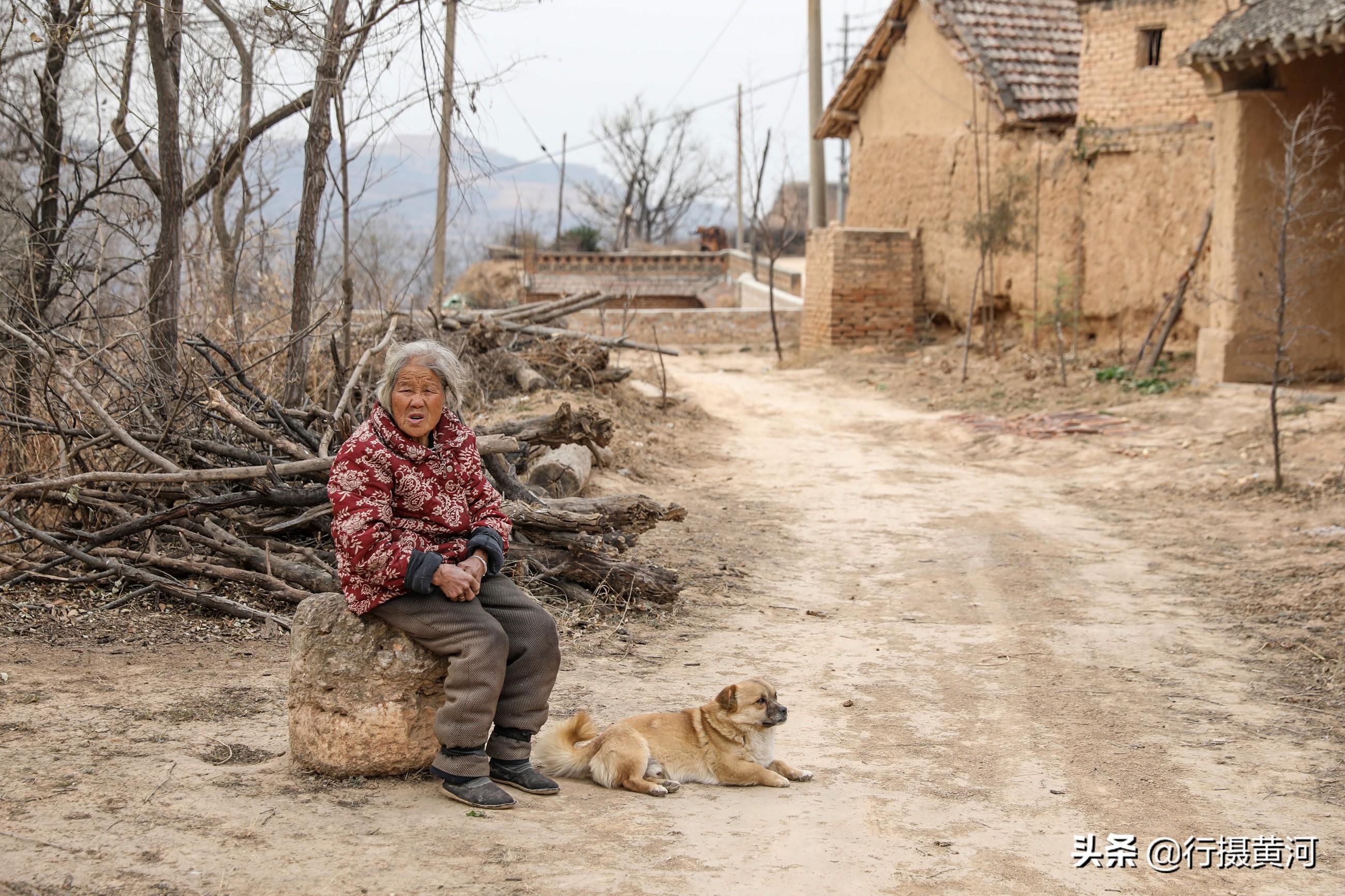 8旬奶奶3年間喪失2名親人,如今和狗狗相依為命,她活成啥樣子
