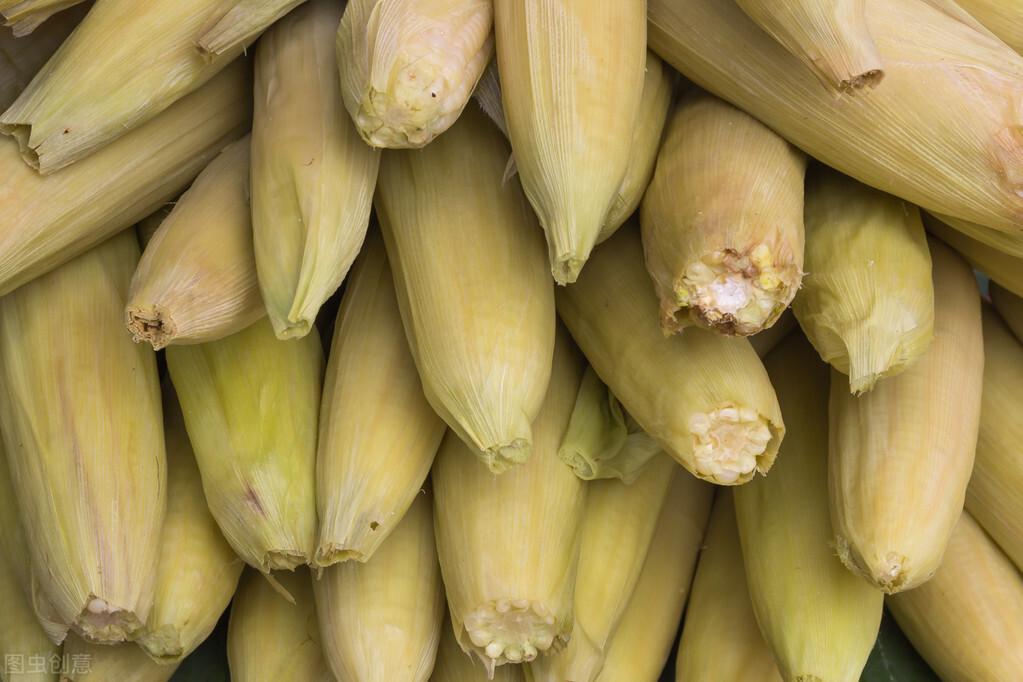 保存玉米,直接冷冻还是煮熟再冻?教你正确做法,玉米新鲜又香甜 美食做法 第2张
