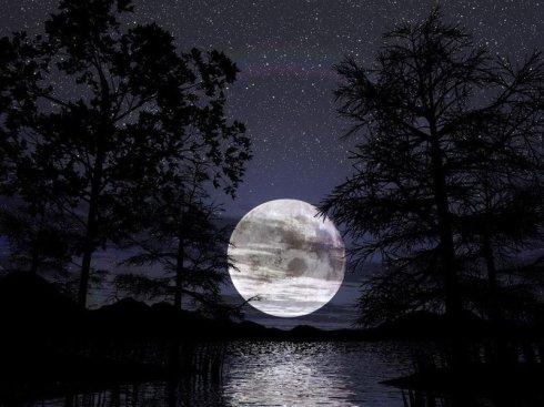 朱海阔:月光下,与自己重逢