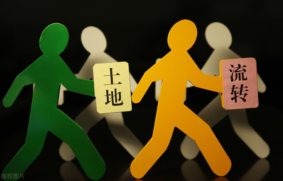 """徐祥临:新华社记者力挺""""湄潭试验"""",错误"""