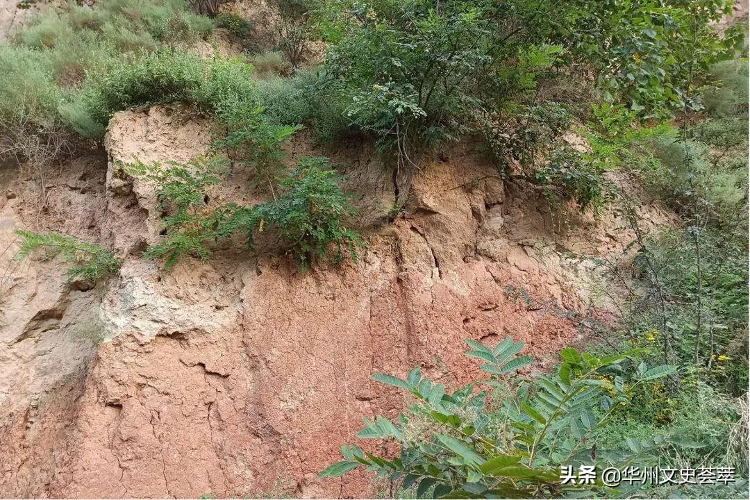 1556年大地震震中的具体位置——重论明代华县大地震
