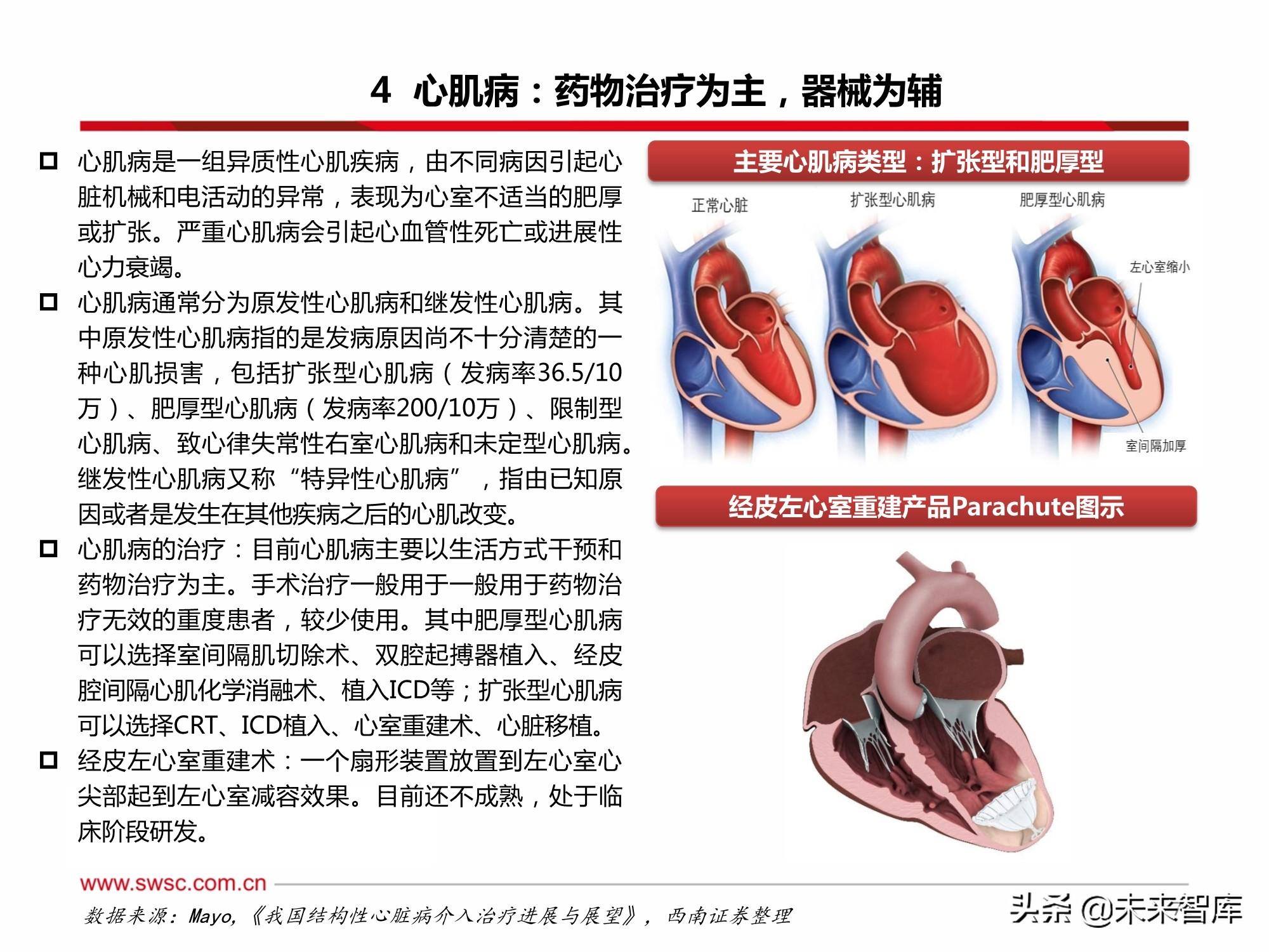 结构性心脏病介入器械行业深度报告:十年十倍正起航