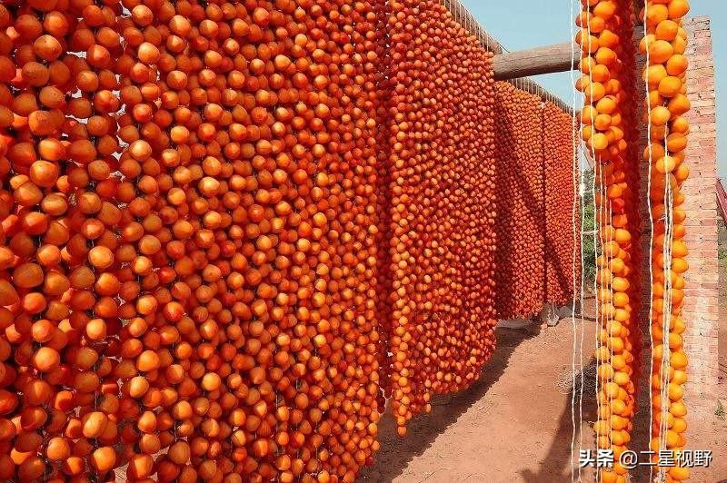 渭南一个普普通通的县城,为何能够把一种农产品做到产值近10亿元