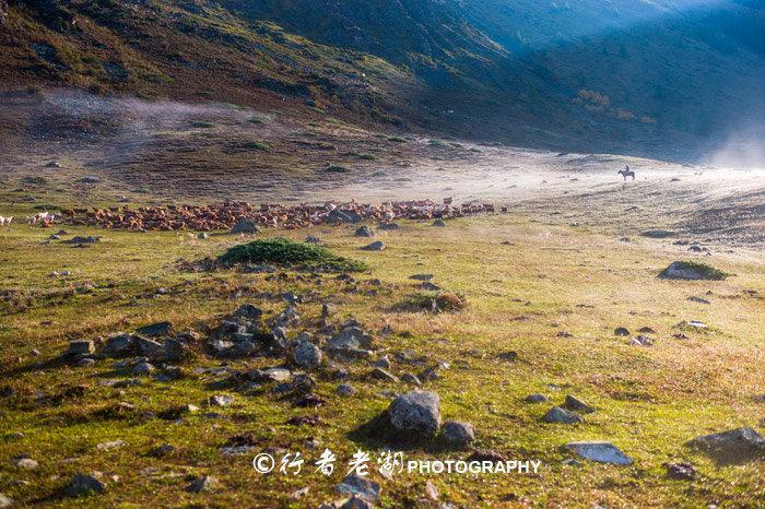 新疆旅行三次总结的攻略,拿去说走就走,北疆旅游不用愁
