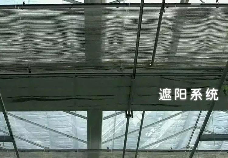 连栋温室大棚内保温和内遮阳的区别