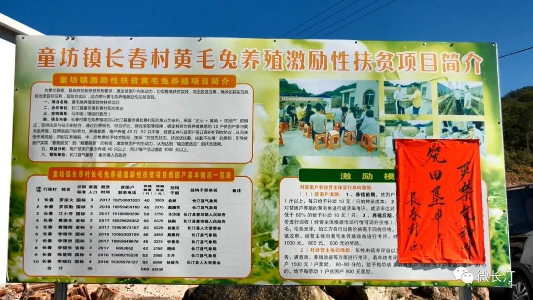 长汀县童坊镇长春村:打造生态水头 建设幸福长春