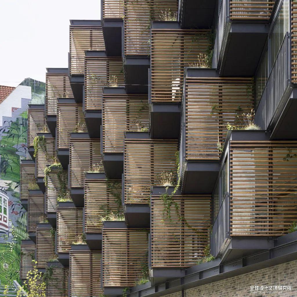 建筑篇 | 英国 Dezeen Awards 2021 短入围公布景观类中国项目大满贯