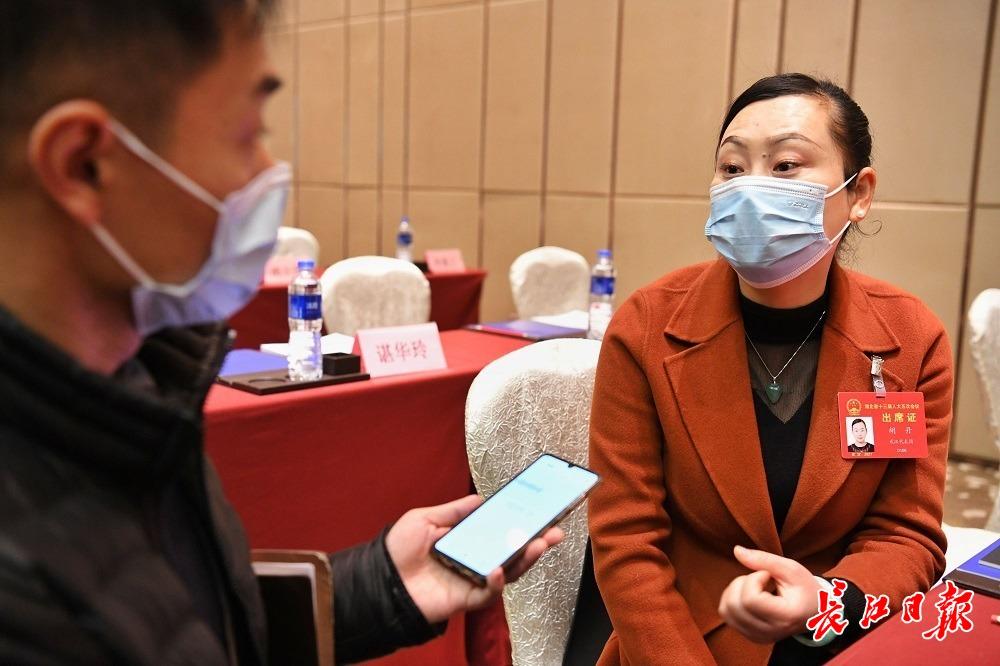 """湖北省人大代表胡丹建议:支持""""中国种都""""建设"""