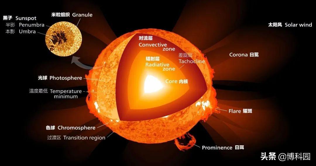 像洋葱一样,在太阳内部是分层的,而且热量传输由等离子体流主导