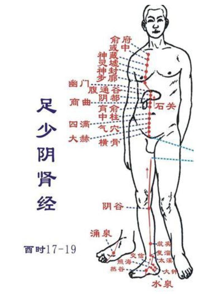 身体小毛病,按压8穴1经,帮助你预防小病变大病 小毛病 第9张