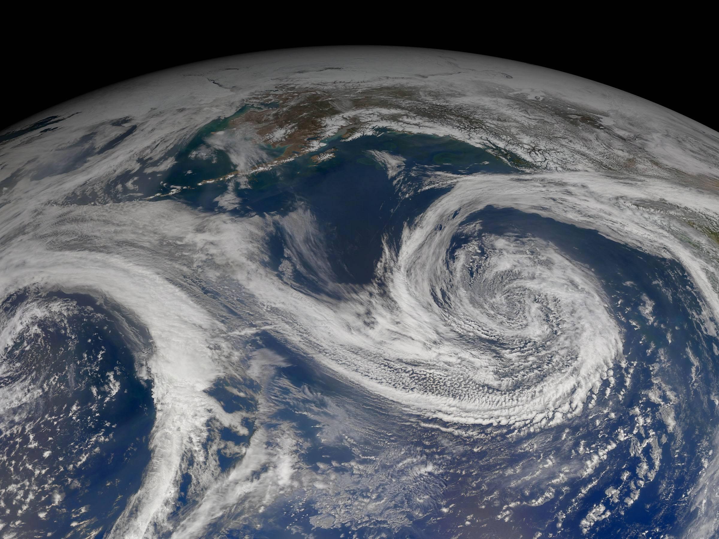 种种迹象已经实锤,人类是地球最大最危险的外来入侵生物
