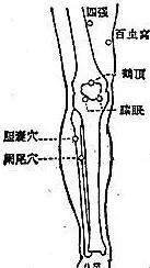 身体小毛病,按压8穴1经,帮助你预防小病变大病 小毛病 第19张