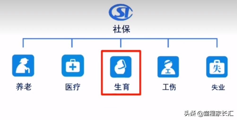 生育保险小知识(最后附流程图) 第1张