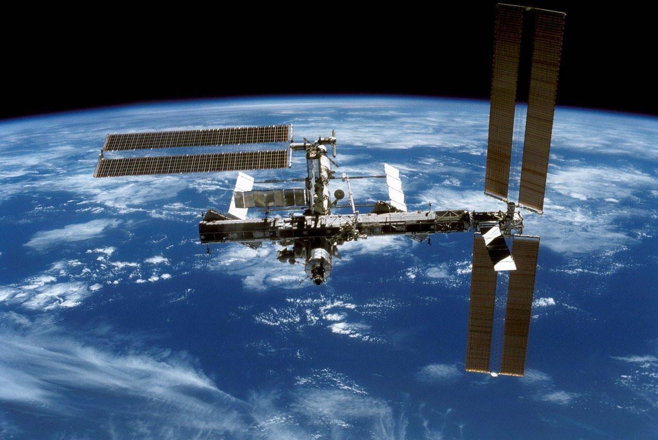 没有空气,在太空中,真的有地球生物可以生存吗?