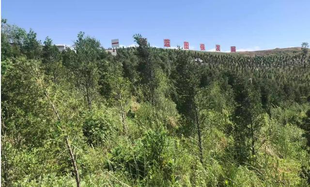 平顶山投入5.9亿涉4.4万亩地只为这个项目,网友:棒极|城市手记