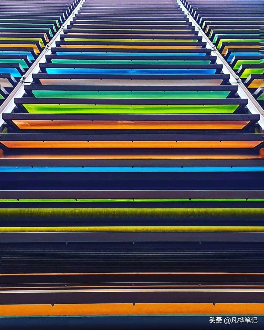 充满活力的彩色摄影技巧