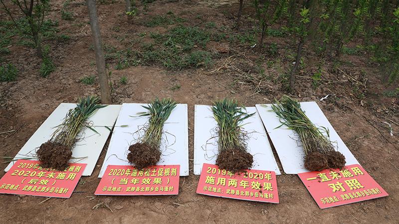 土壤板结、耕层变浅等土壤结构性障碍问题该怎么解决?