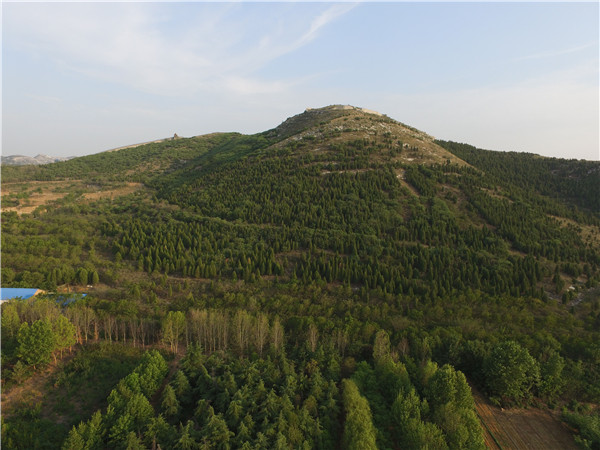 七旬老翁携家人16年间负债种树80多万棵,荒山变绿洲,曾被评为先进代表,女儿却因非法占林被拘捕?