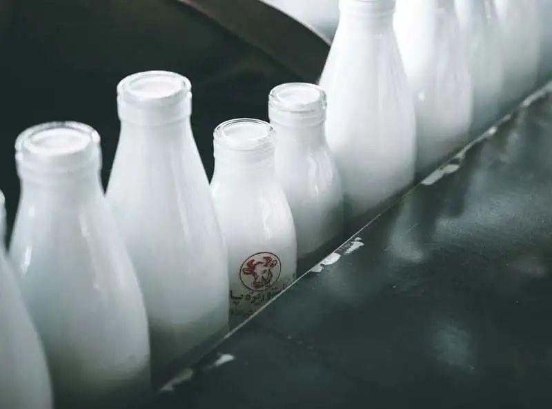 牛奶和酸奶,到底哪个更补钙?哪个营养价值更高?这文讲明白了