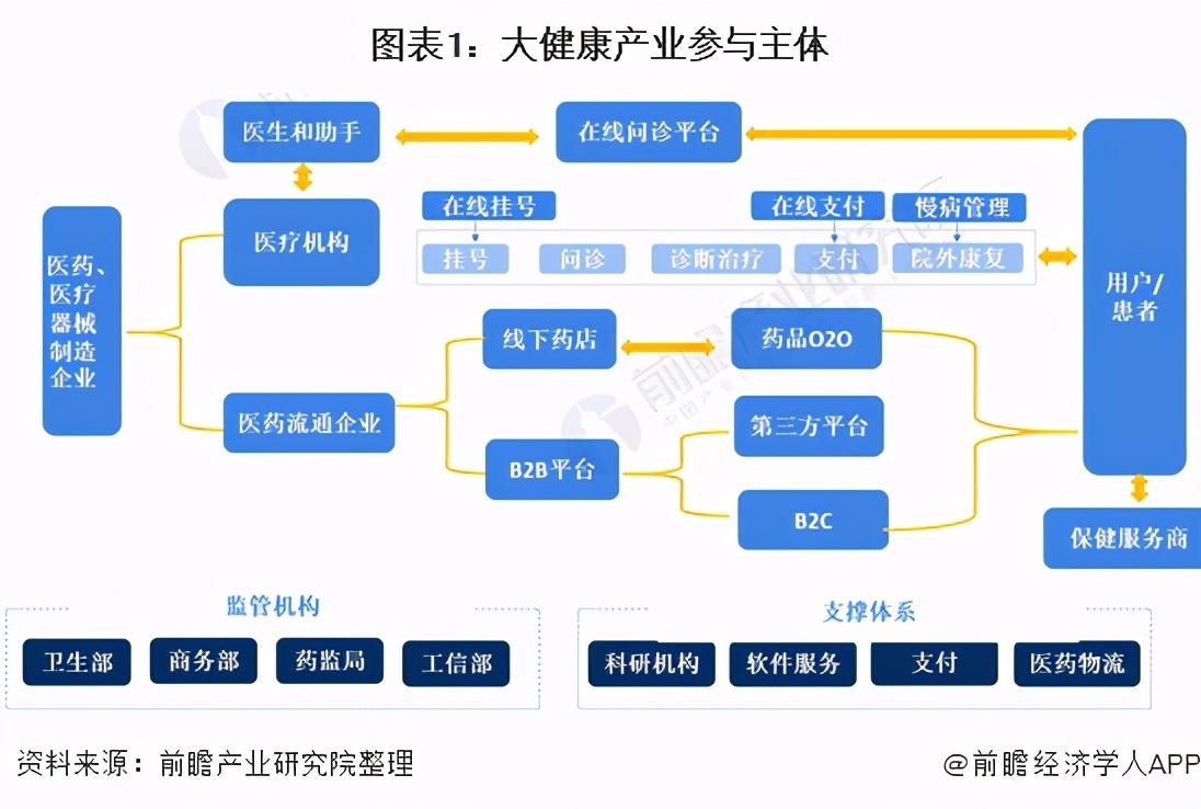 预见2021:《2021年中国大健康产业全景图谱》