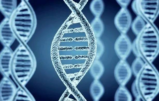 人類為什麼無法永生?科學家:基因的自私,不在乎個體的死亡