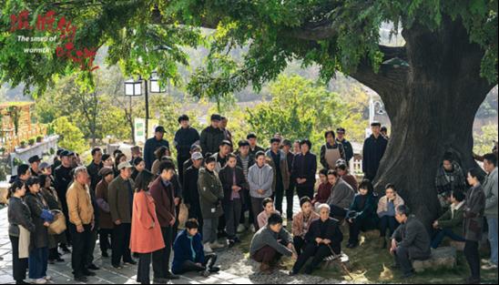 靳东、吴越和李乃文强强联手的这部剧,凭什么能争收视宝座?