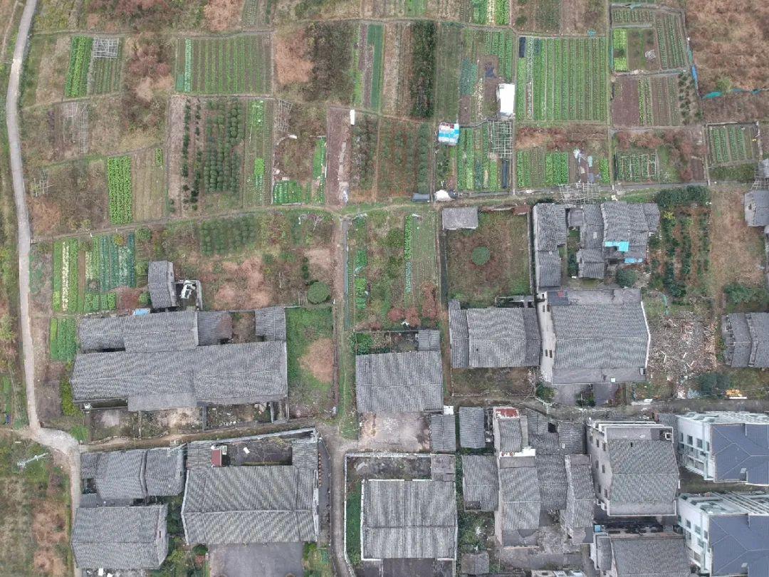 章渺:花费3年研究一个村,这个建筑系女孩选择温肯继续前行