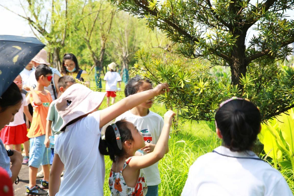 洋湖湿地社会实践活动探访再生水厂,厚植公众护水心!