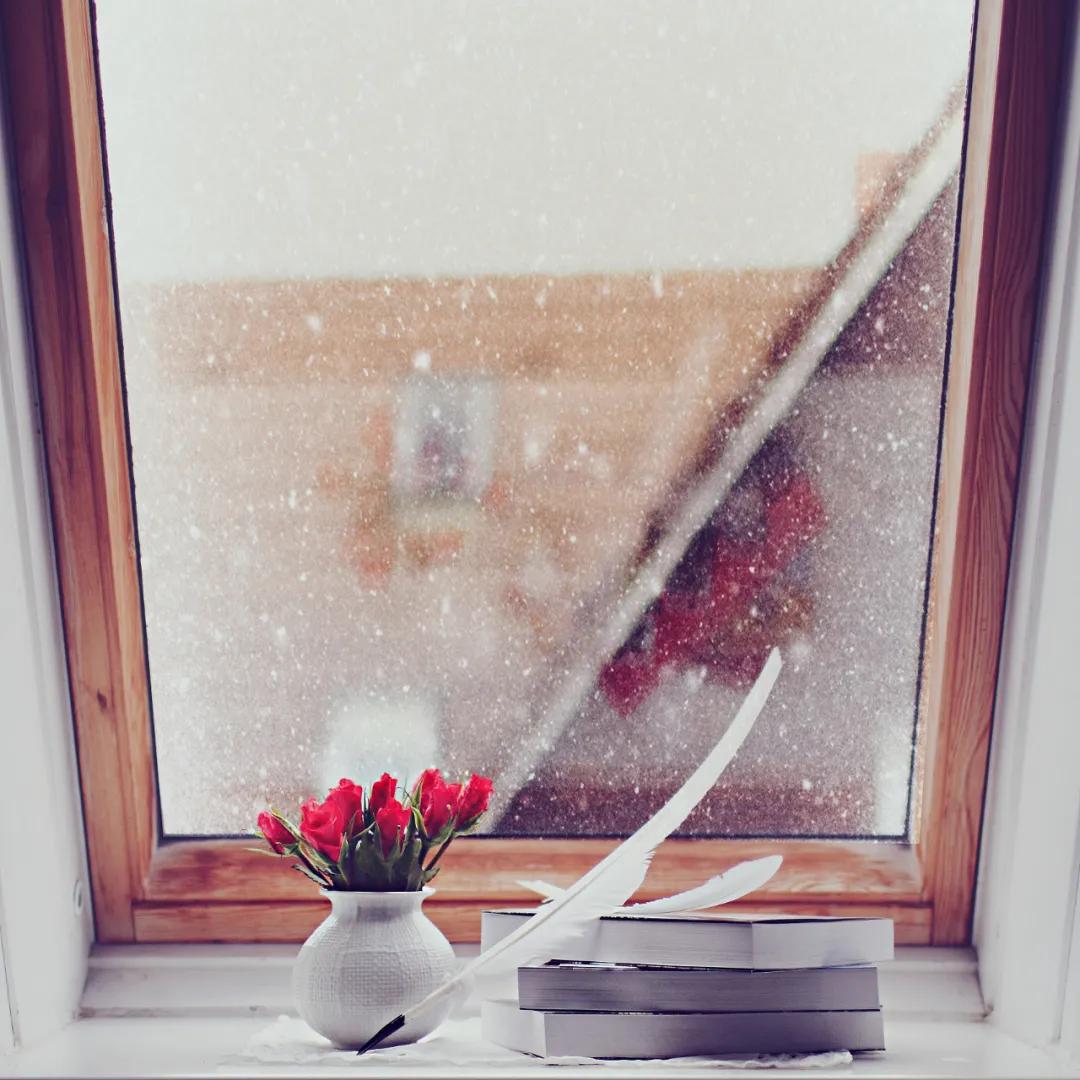 今日,立冬