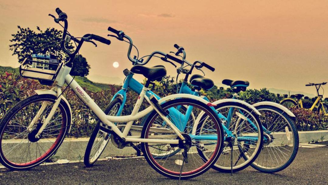"""共享单车为什么会比坐公交车更""""贵""""?"""