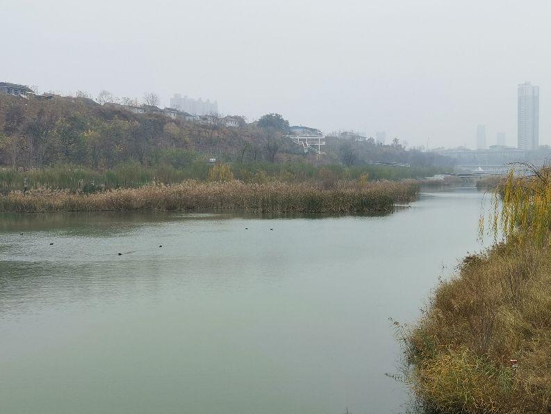 一川美景赛江南,三原清河公园不一般