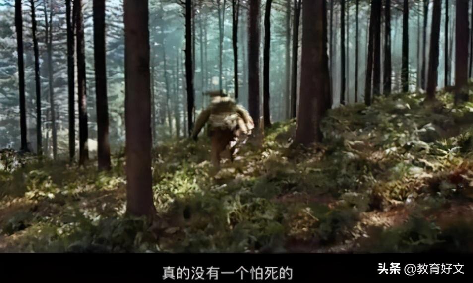 中国青少年应有一点血性——一位教师看完《金刚川》后的3点感想