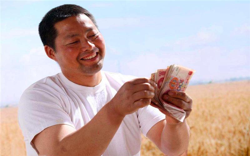 农村创业,有哪些项目投资小、风险小、见效快?这几个都不错