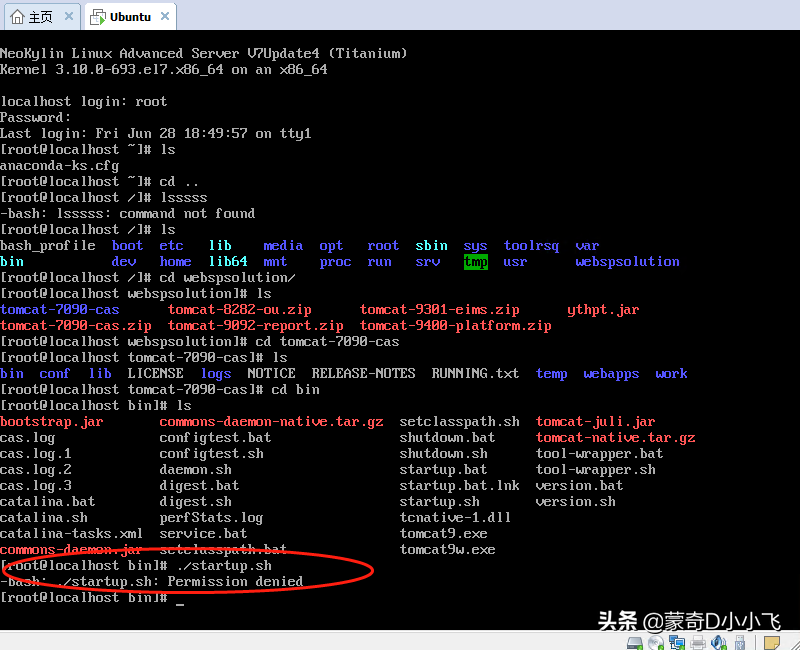 linux系统执行.sh提示permission denied怎么解决