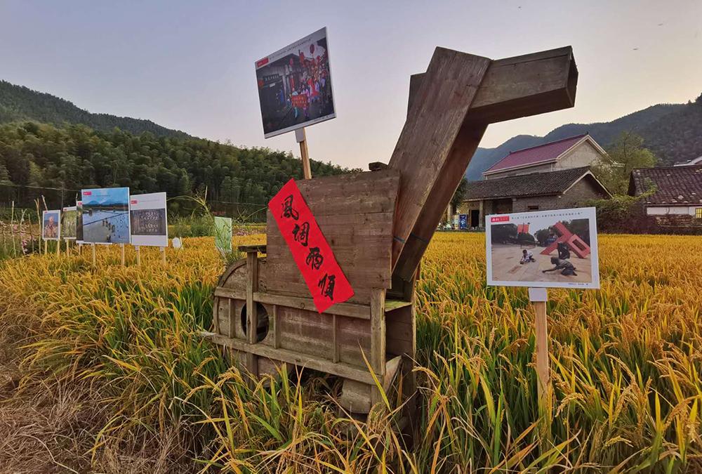 西村:田园里的摄影季