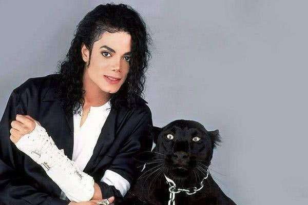 迈克尔杰克逊有哪些成就?