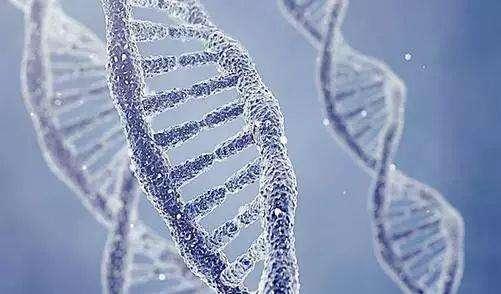 胶质瘤有遗传给孩子的可能吗?