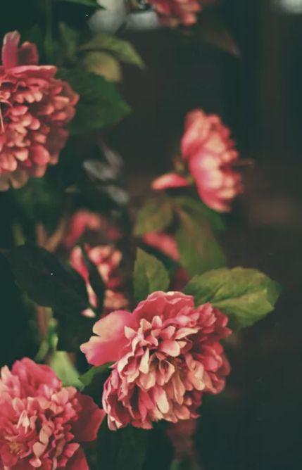 人间最美是相思 几首情词 几首情诗-第14张图片-诗句网