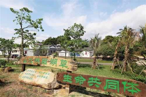 海内外华文媒体探访琼海沙美美丽乡村