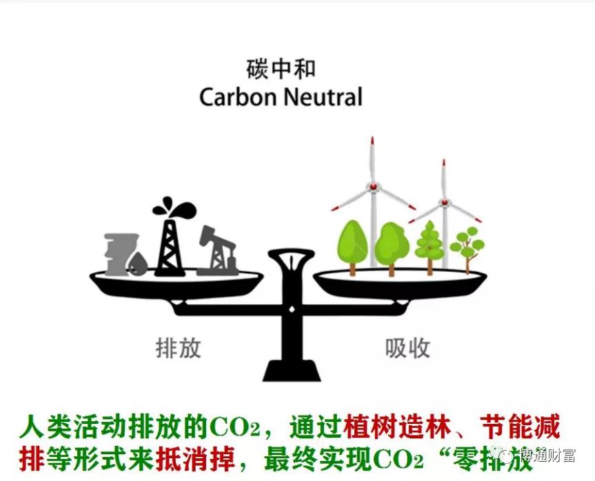 前40年高速发展,后40年碳中和