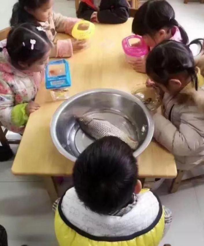 哈哈哈哈,幼儿园作业是欢乐源泉:这届家长太实诚,老师笑出腹肌