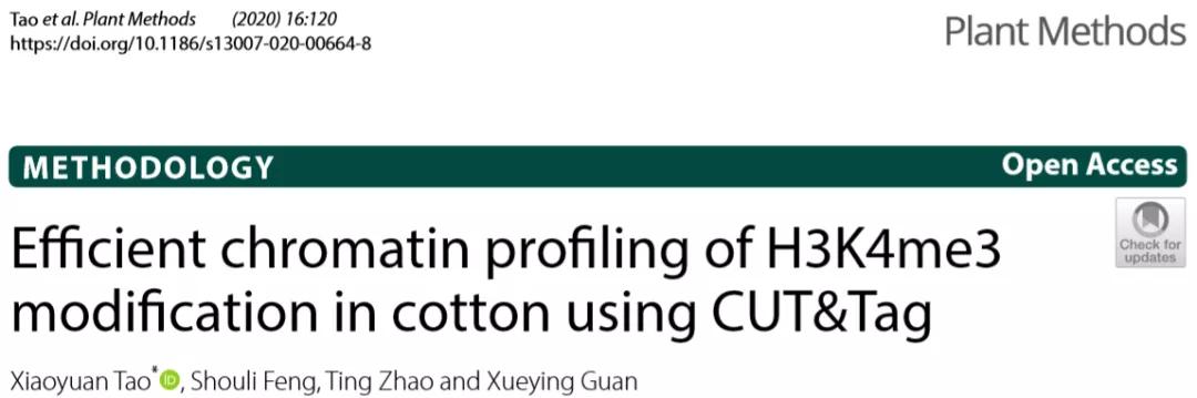 CUT&Tag技术用于棉花染色质H3Kme3修饰研究
