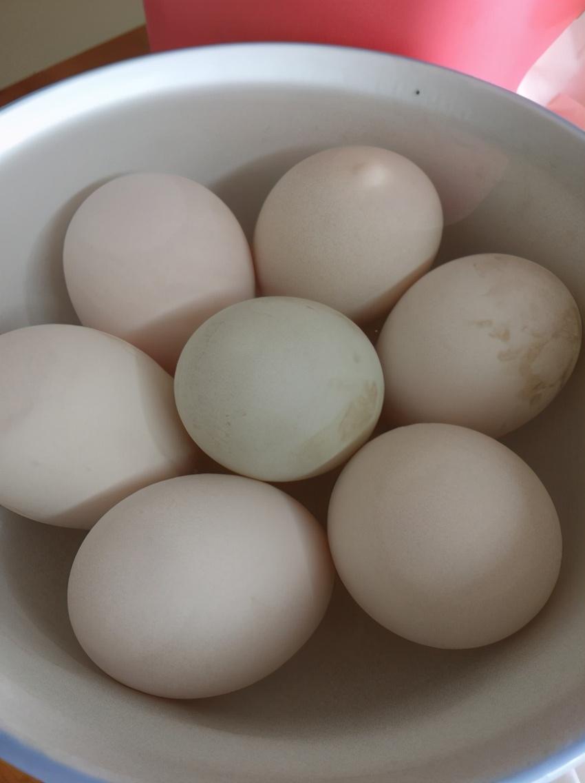 自制咸鸭蛋,只需2样调料,10天就成熟,半月蛋黄起沙出油,真香 美食做法 第4张
