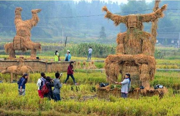 农业产业周报|海大、顺丰、牧原、极飞、新希望最新动态
