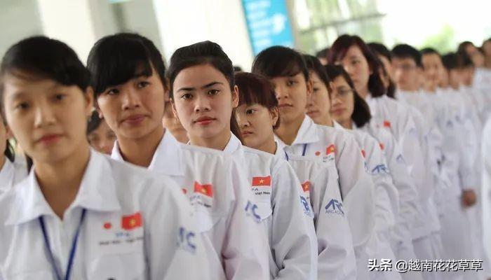 越南第一城平均工资不到400美元,胡志明市发布劳动力市场报告