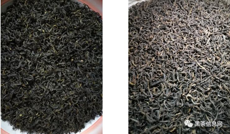 六堡茶按生产标准如何分类与适用
