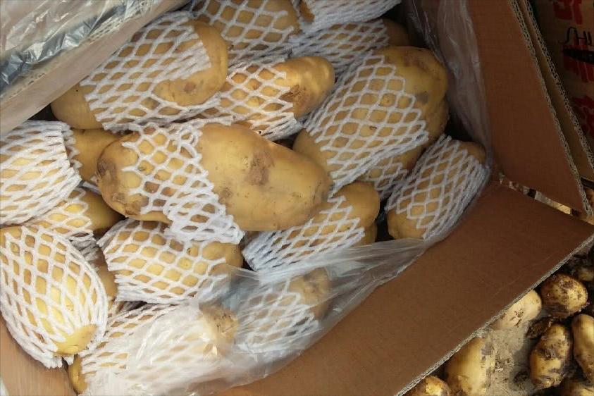 3招教你贮藏土豆不发芽,亲测有效,建议收藏转发哦