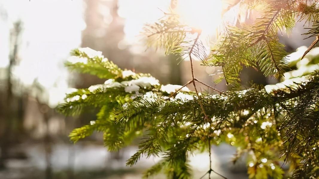 """要想秋季不留下""""病根"""",抓住霜降最后的尾巴,谨记3条养生原则"""